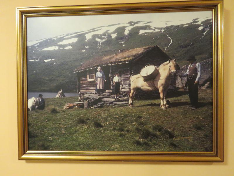 Marit Hommedal - Foto frå Skreio,  Arnetveiselet